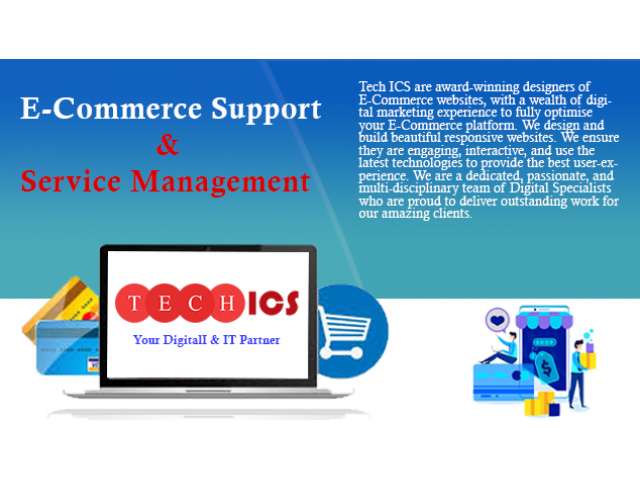 Tech ICS | E-commerce Website Design | Services