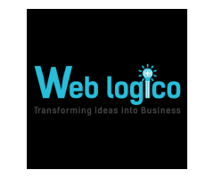 Web Development Experts, Expert Web Designer, Weblogico
