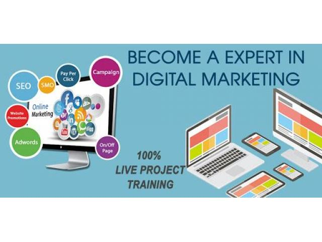 Best Digital Marketing Course in Vadodara | Learn Digital Marketing in Vadodara