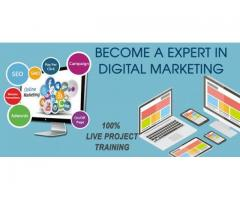 Best Digital Marketing Course in Vadodara | Learn Digital Marketing in Vadodara