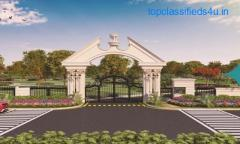 Ekam Rose View plots Sector 5 Shona ,Gurgaon