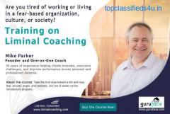 Training on Liminal Coaching