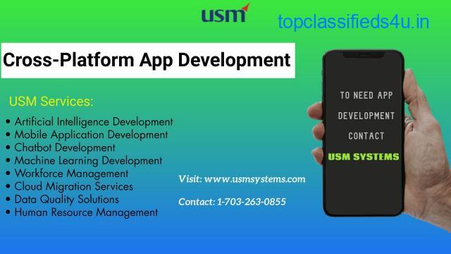 Cross platform application development company in Texas
