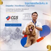 Hospital For Dogs | CGS Hostpital
