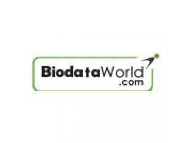 Require resumes for employee hiring - biodataworld