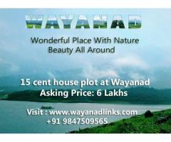 15 cent house plot for sale  at Wayanad only 6 lakhs